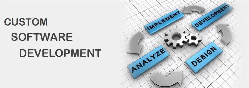 Custom Software Development in Bhubaneswar