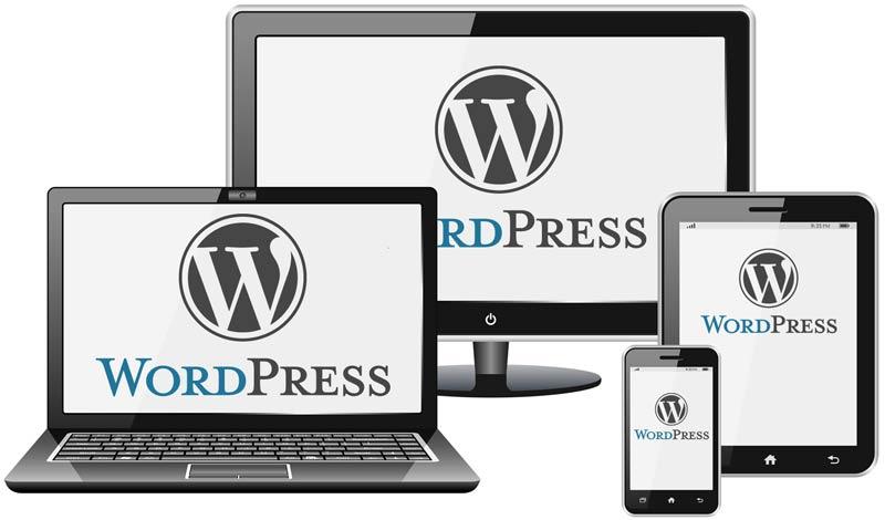 Custom WordPressDevelopment